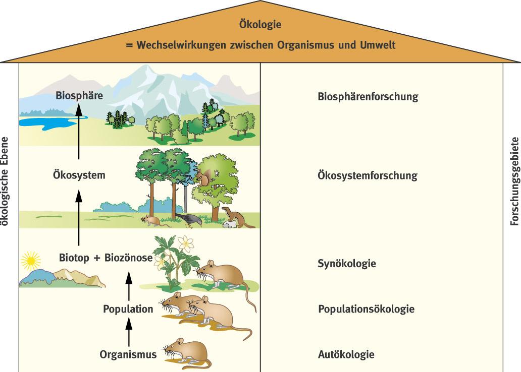 Biosphäre Biologie